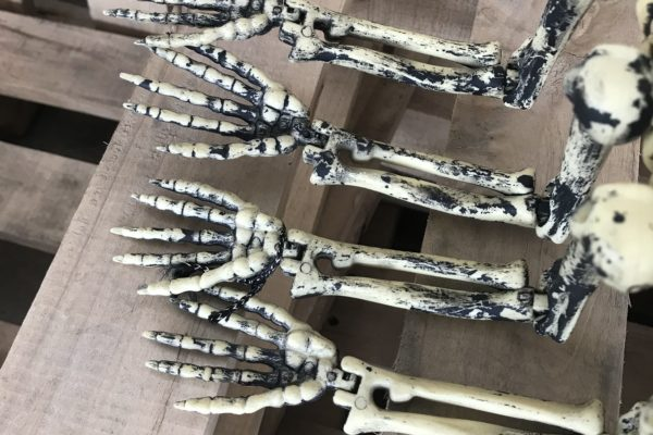 singapore-event-management-halloween-props-rental-8-legged-skeleton-legs-zoom