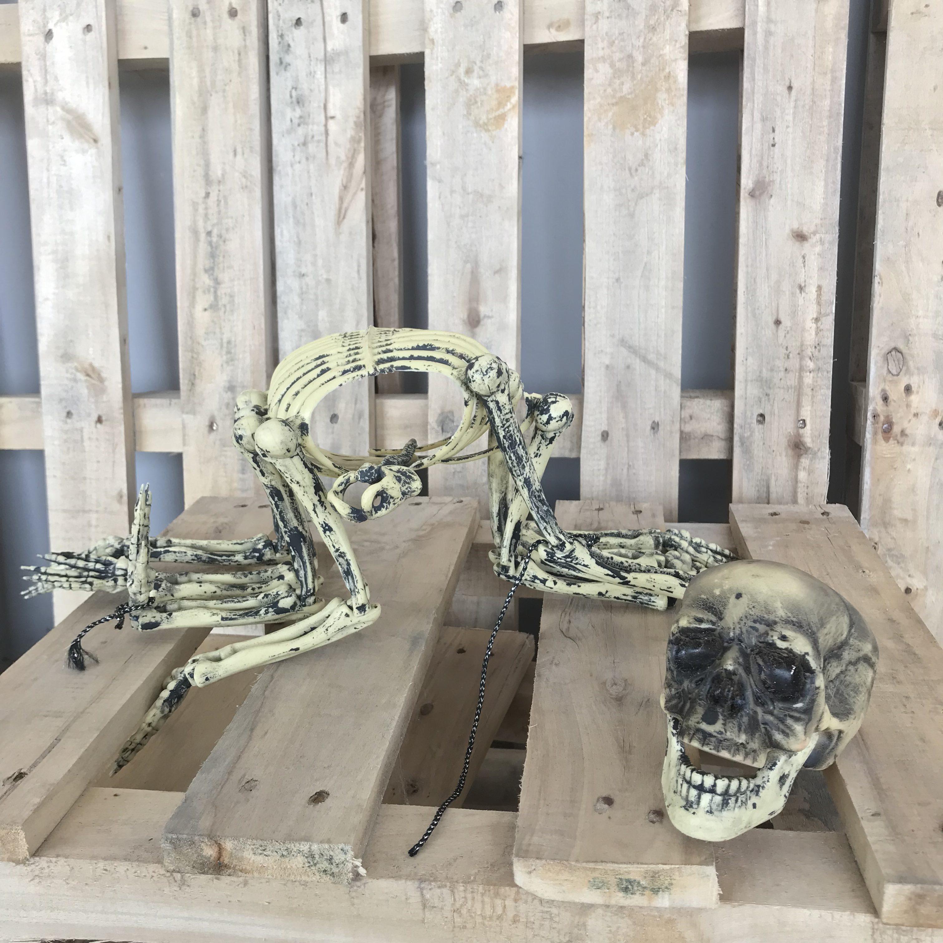 singapore-event-management-halloween-props-rental-8-legged-skeleton