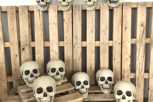 singapore-event-management-halloween-props-rental-large-skull-set