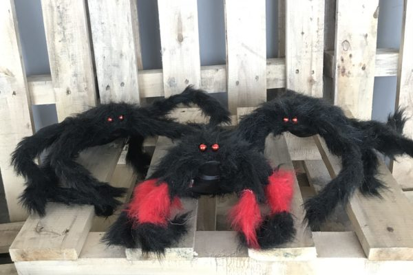 singapore-event-management-halloween-props-rental-large-spiders