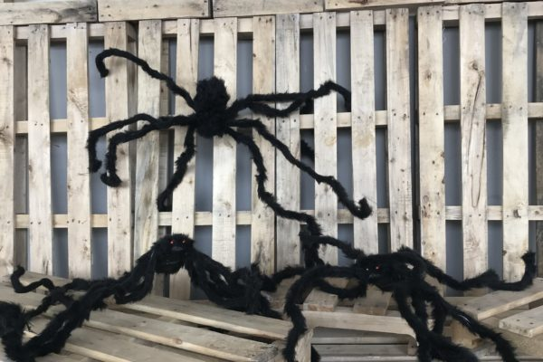 singapore-event-management-our-shop-props-long-leg-spiders