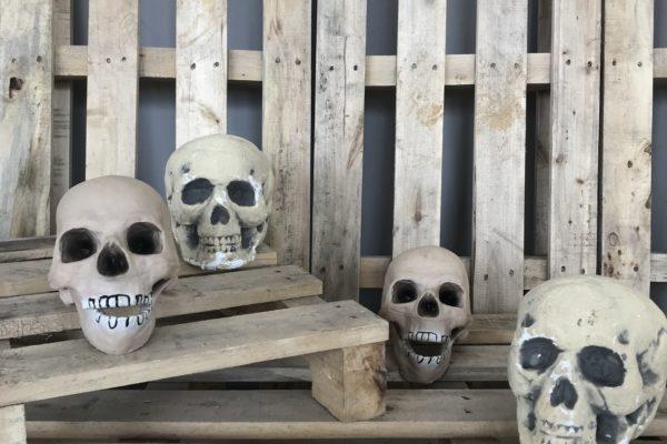 singapore-event-management-halloween-props-rental-medium-skull-size