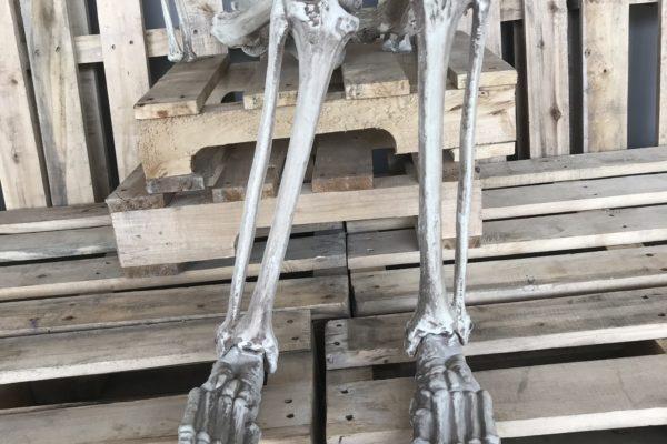 singapore-event-management-our-shop-props-skeleton-leg