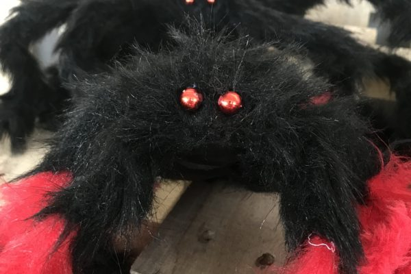singapore-event-management-our-shop-props-small-spiders-red-black-zoom